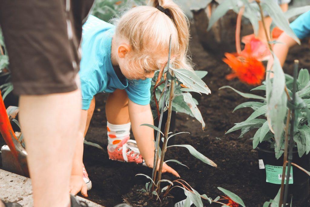 Desarrollo sostenible en las empresas familiares